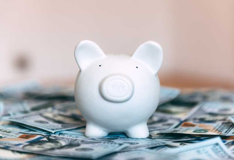 Piggy bank surrounded by cash to represent high net worth